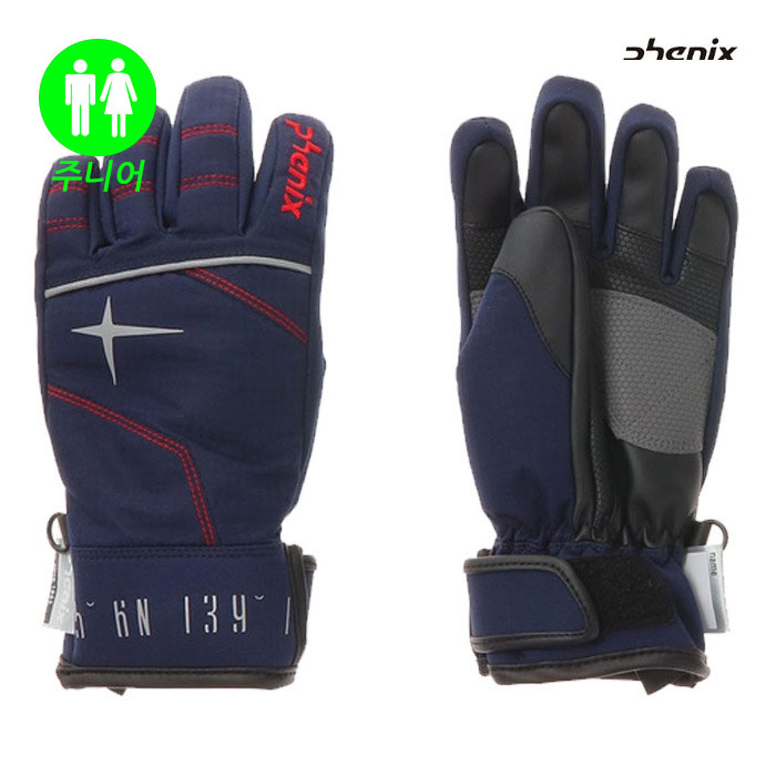 피닉스 주니어 스키장갑 PHENIX Norway Alpine Team Boy's Gloves(DN) (19/20)