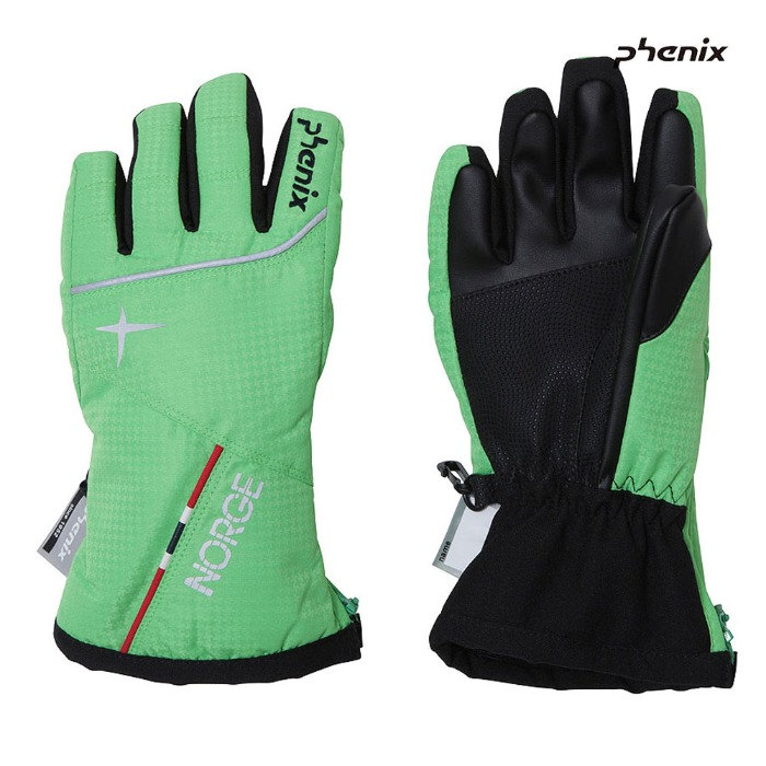 피닉스 아동 스키장갑 PHENIX Norway Team Kid`s Gloves(GN)(18/19)